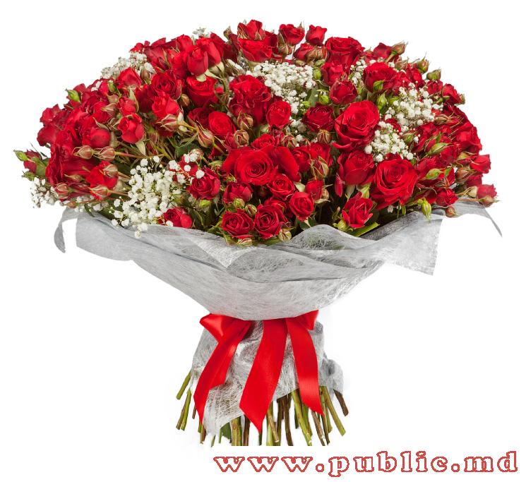 Заказать цветы в кишиневе, доставка цветов в казани отзывы